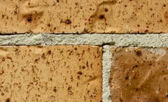 Sandtex pitture - NEUTRAL prodotto speciale